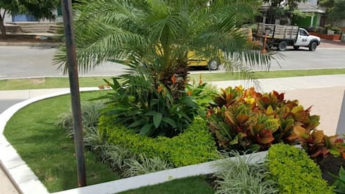 SALA DE VENTAS – MADEIRA APTOS. – BARRANQUILLA – COLOMBIA: Jardines de estilo tropical por BRASSICA SOLUCIONES PAISAJISTICAS S.A.S.
