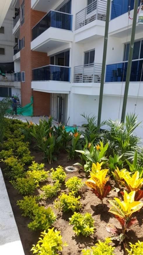 CONJUNTO MEDITERRANEAN TOWERS – BARRANQUILLA – COLOMBIA: Jardines de estilo tropical por BRASSICA SOLUCIONES PAISAJISTICAS S.A.S.