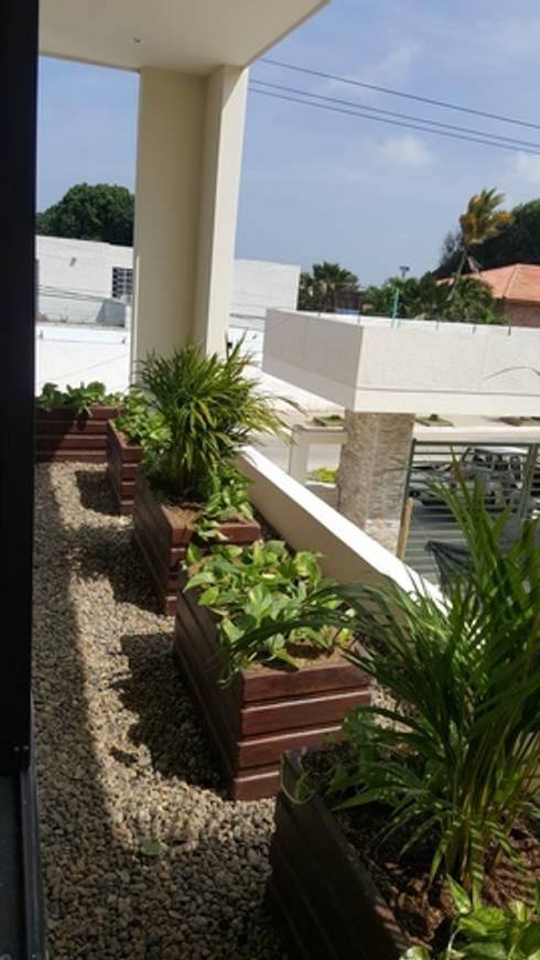 CONJUNTO ANCARES CAMPESTRE – BARRANQUILLA – COLOMBIA: Jardines de estilo tropical por BRASSICA SOLUCIONES PAISAJISTICAS S.A.S.