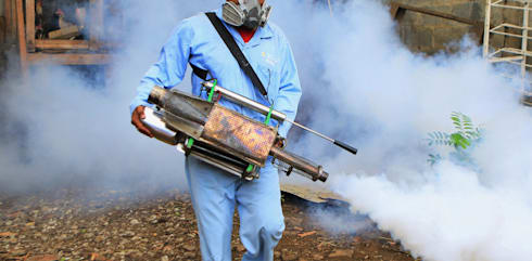 Quality Fumigation:   by Pest Control Durban