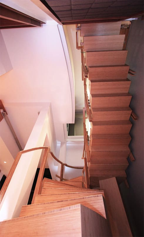 Bamboo Staircase:  Corridor, hallway & stairs  by Inline Spaces Pty Ltd