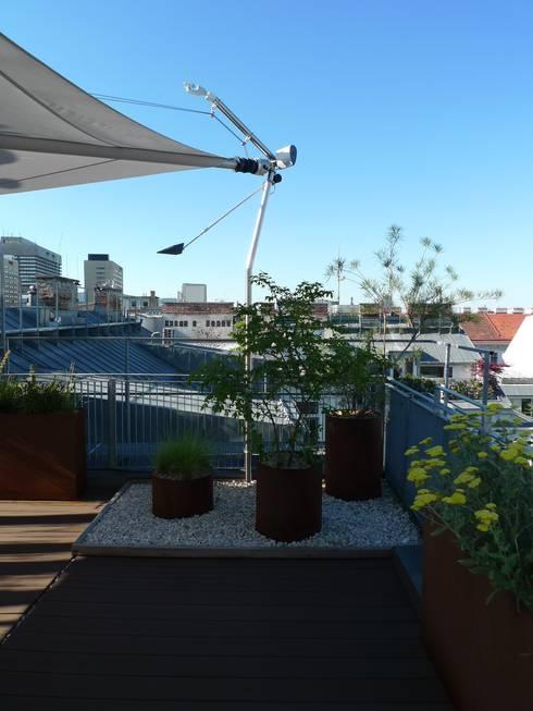 Gestaltung Dachterrasse dachterrasse atelier körner studio für gestaltung wien berlin