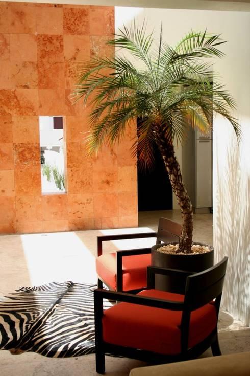 VESTÍBULO Casa F: Pasillos y recibidores de estilo  por Micheas Arquitectos