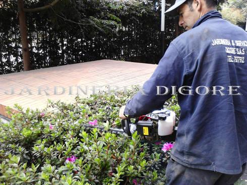 DISEÑO DE JARDINES:  de estilo  por JARDINERÍA & SERVICIOS DIGORE S.A.S
