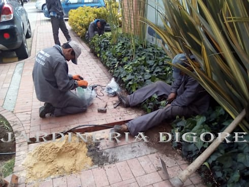 SISTEMAS DE RIEGO POR GOTEO AUTOMATIZADO:  de estilo  por JARDINERÍA & SERVICIOS DIGORE S.A.S