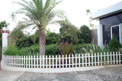Dhanturi Farm House: mediterranean Garden by iammies Landscapes