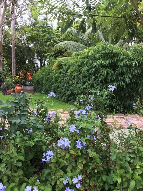 dise u00f1o de jardines de leycaza sa de cv