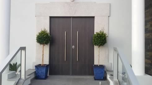 Front Door:  Windows & doors  by Portrisa