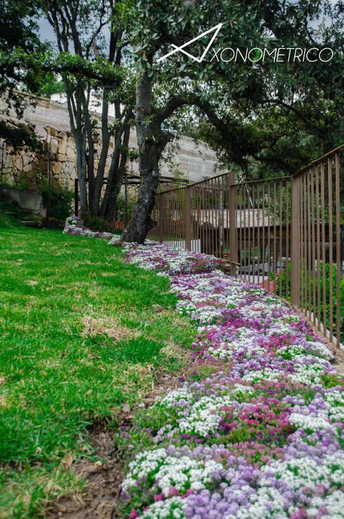 Rio de Flores: Jardines de estilo moderno por Axonometrico