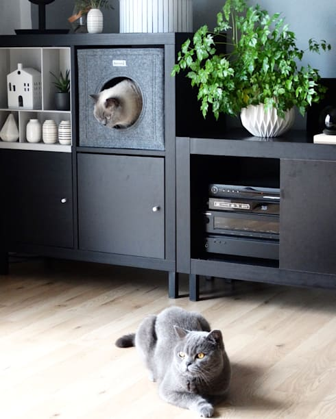 die moderne katze ikea hack regal kallax wir zum katzenm bel verwandelt homify. Black Bedroom Furniture Sets. Home Design Ideas