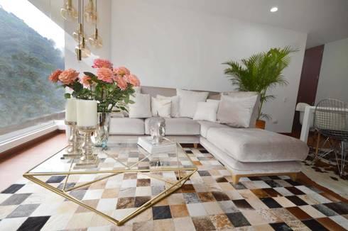 CONTEMPORANEO : Salones de estilo  por CASTELIER