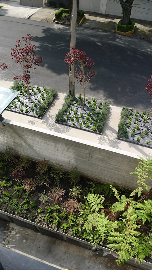 Vista aérea de la banqueta: Jardines en la fachada de estilo  por Hábitas
