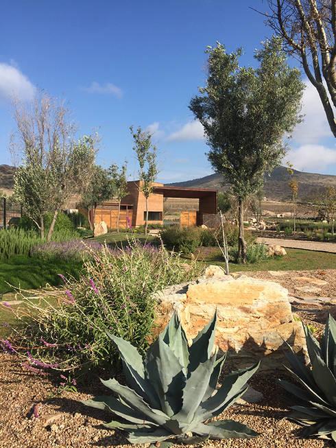 Acceso al fraccionamiento: Jardines en la fachada de estilo  por Hábitas