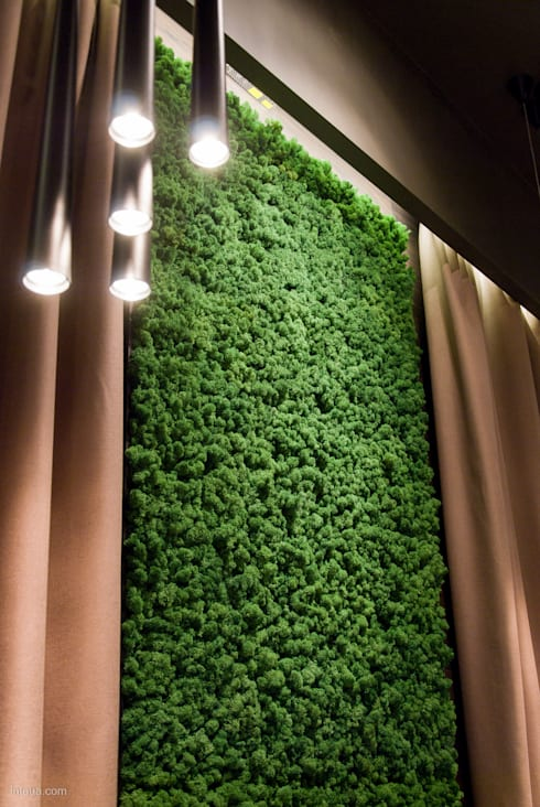 Moss wall design by Moss Trend : modern Living room by Moss Trend
