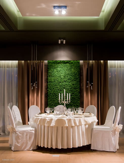 Reindeermoss - green wall decor by Moss Trend: modern Dining room by Moss Trend