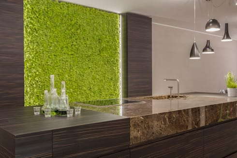 Reindeermoss—green wall decor by Moss Trend:  Kitchen units by Moss Trend