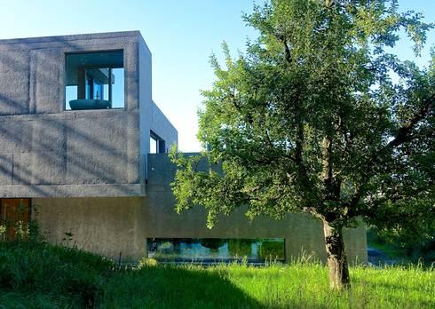 Waldsicht - Foto by zeitwerkstatt:  Einfamilienhaus von zeitwerkstatt gmbh
