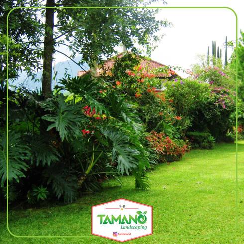 Taman Halaman Rumah:  Hotels by tamano