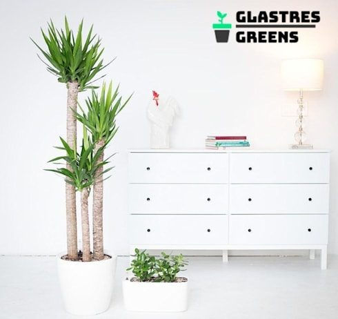 Glastres Greens:  Front yard by Glastres Greens