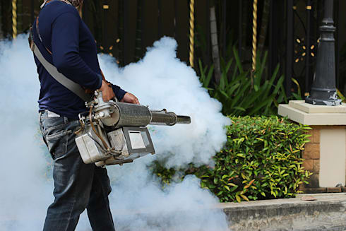 Residential Fumigation Services:   by Pest Control Pretoria