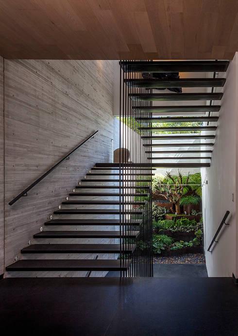 Escalera Interior: Escaleras de estilo  por Eduardo Gutiérrez Taller de Arquitectura