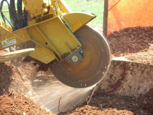 Stump Removal:   by Tree Felling Johannesburg