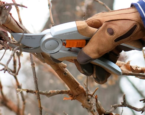 Garden Trimming and Pruning:   by Tree Felling Johannesburg