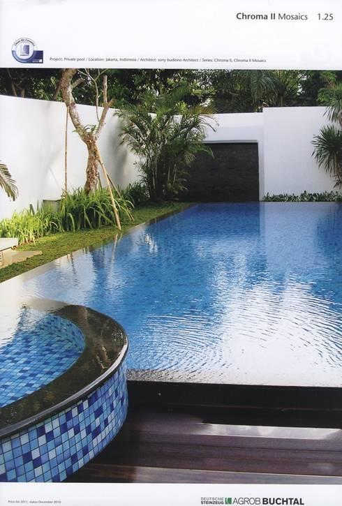 BUCTHAL GERMANY MENDUT:  Kolam Renang by sony architect studio