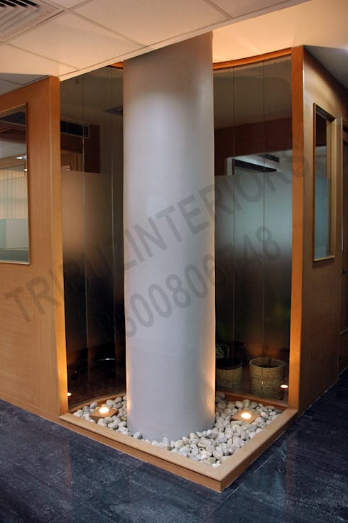 NIAC:  Office buildings by Tribuz Interiors Pvt. Ltd.