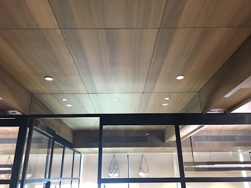 VIEW -4 (CEILING):  Office spaces & stores  by DESIGNER'S CIRCLE
