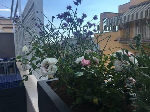 Una terrazza romana urban mediterranean by Au dehors Studio ...