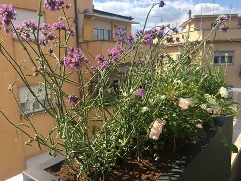 Una terrazza romana urban mediterranean von Au dehors Studio ...