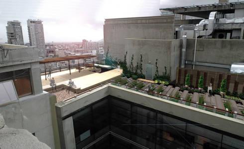 Azotea Trabajadores contraloría general de la república : Terrazas  de estilo  por sur arquitectura del paisaje