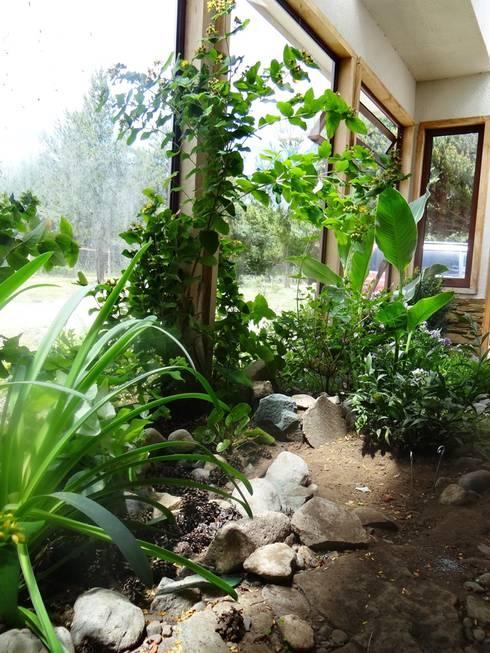 Diseño de Jardín interior de casa en Rio Claro por Casa Rural: Jardines de invierno de estilo  por casa rural