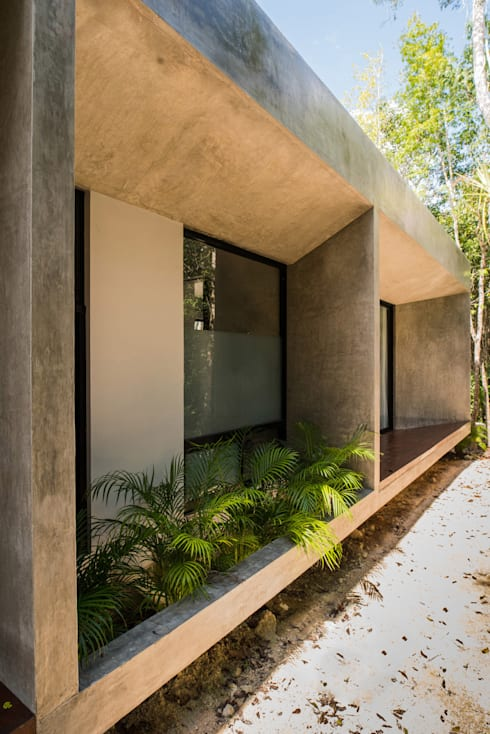 房子 by CO-TA ARQUITECTURA