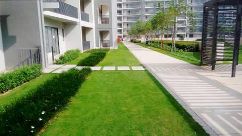 paving patterns: modern Garden by NMP Design