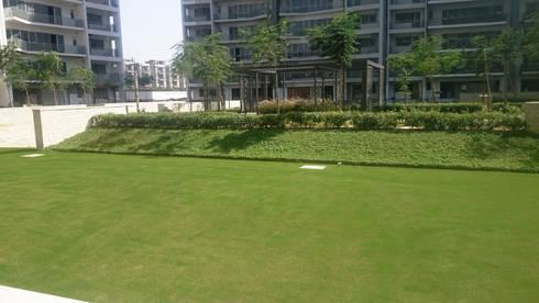 golf park: modern Garden by NMP Design