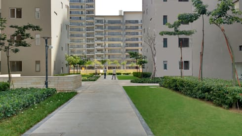 pavement: modern Garden by NMP Design