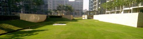 the pitch n putt golf park: modern Garden by NMP Design