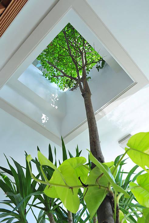 Độc Đáo Với Nhà Phố 3 Tầng Đẹp Có Thiết Kế Hồ Bơi Trên Sân Thượng :  Nhà vườn by Công ty TNHH Xây Dựng TM – DV Song Phát