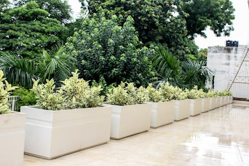 Terrace Garden Decor at Civil Lines, Delhi:  Terrace by Grecor