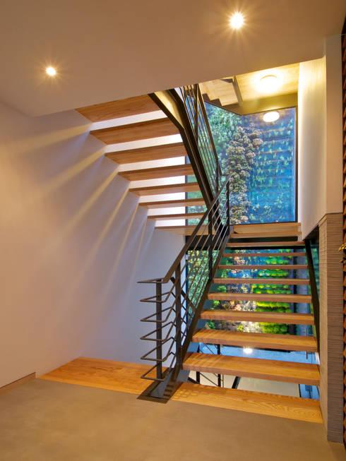 JACARANDAS HOUSE: Escaleras de estilo  por Hernandez Silva Arquitectos