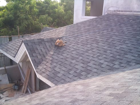 Landmark AR Colonial Slate Color:  Roof by Sri Sai Architectural Products