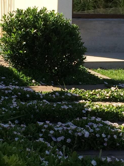 Proyecto de Paisajismo Familia Bravo Oyarzo: Jardines de estilo moderno por Aliwen Paisajismo