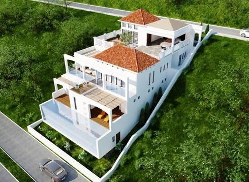 Casa Alexandria :  Single family home by Constantin Design & Build