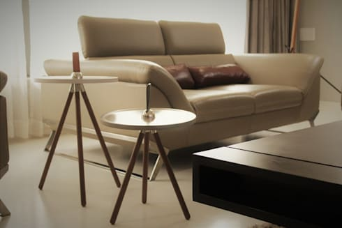 artefacts adds life to home decore: modern Living room by Design Paradigm