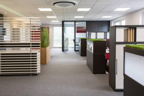 Verschiedene Arbeitszonen in einem Raum von Febrü Büromöbel GmbH ...