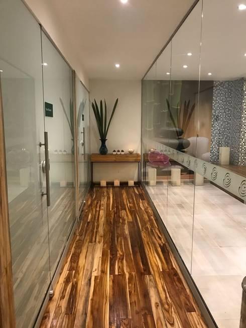 Acceso zona húmeda: Hoteles de estilo  por Diseñador Paul Soto