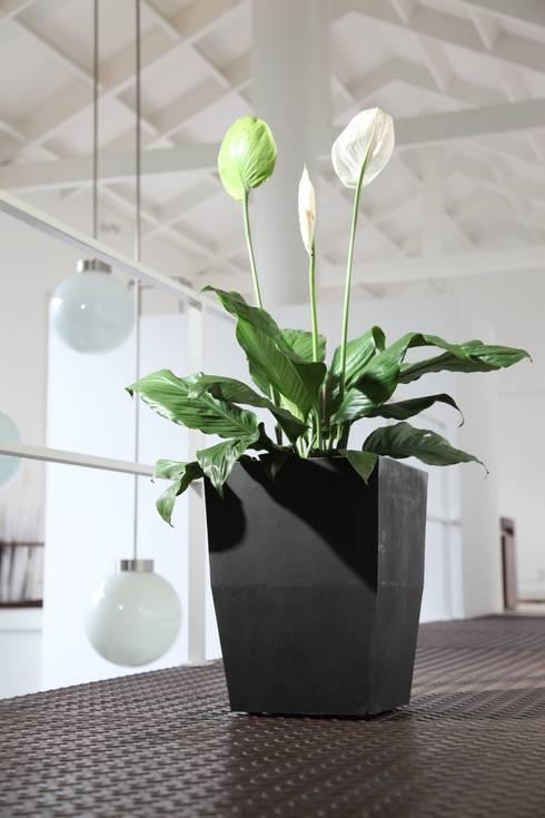 Matera 40cm : Balcones y terrazas de estilo  por Viridis Productos Eco Amigables