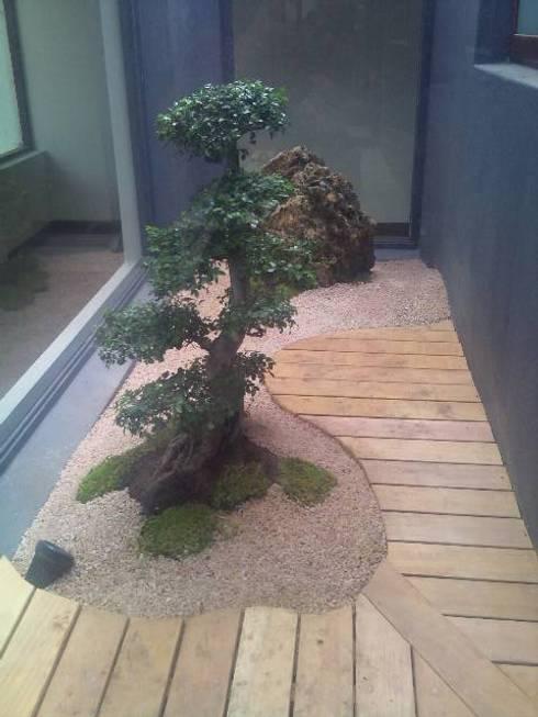 CABELO: asian Garden by Japanese Garden Concepts